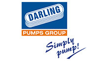 Darling pumps_